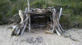 Free Accommodation in Apollo Bay